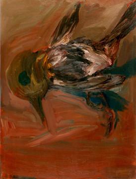 Pták vypadlý ze skleněného hnízda