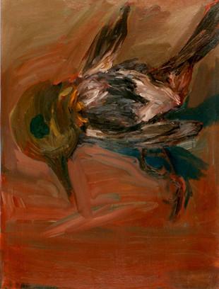 Vogel, aus gläsernem Nest gefallen