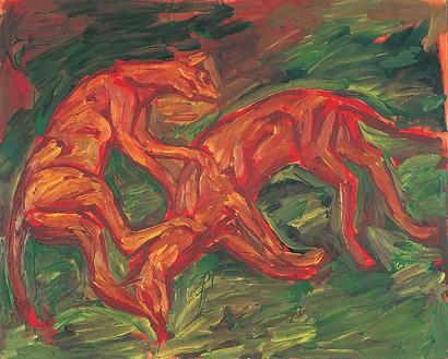 Oranžové kočky