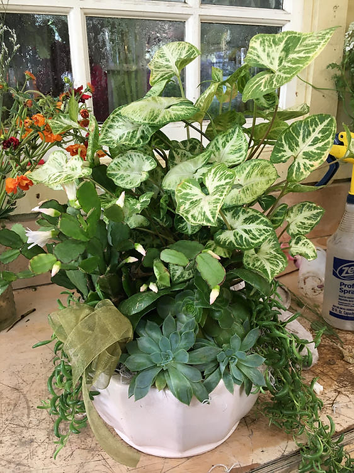 Greens Planter