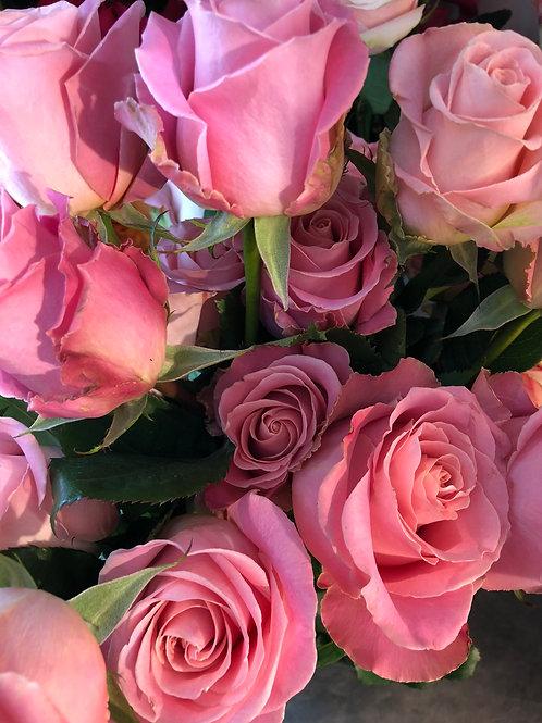 Hermosilla Roses