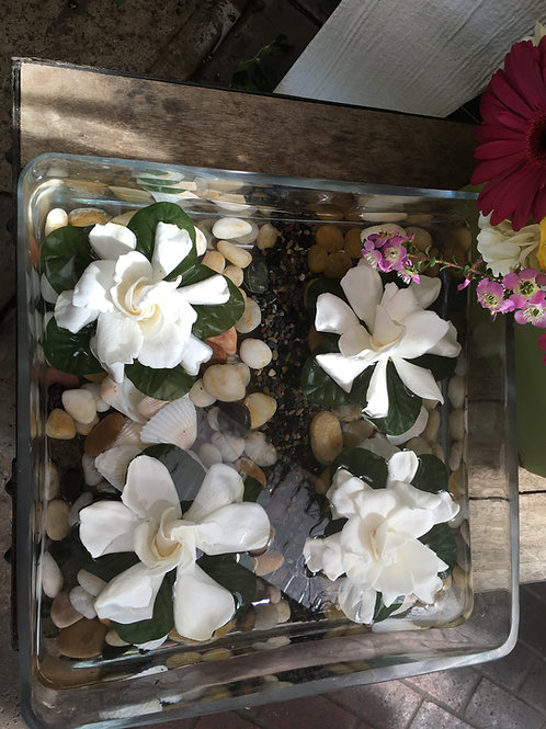 Floating Gardenias