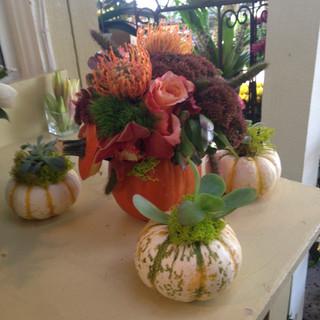 11/Pumpkin centerpieces