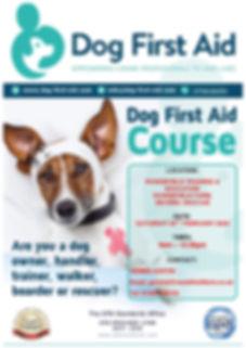Dog First Aid Rowde Training & Education