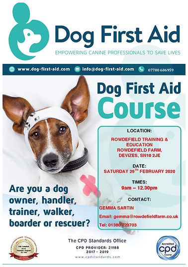 Dog First Aid Rowde Training & Education
