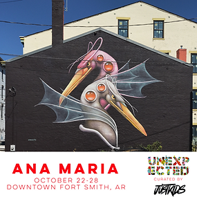 Ana Maria Unexpected Fort Smith