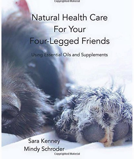 Natural Health Care For Your Four Legged Friends