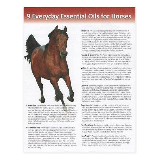 Horse Tear Sheet