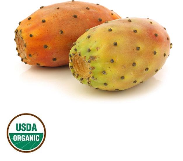 Prickly Pear Seed Oil ~ Virgin Organic ~ 1 oz ~