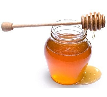 Organic Honey ~ Wildflower fed Bees ~ 16 oz Squeeze Bottle