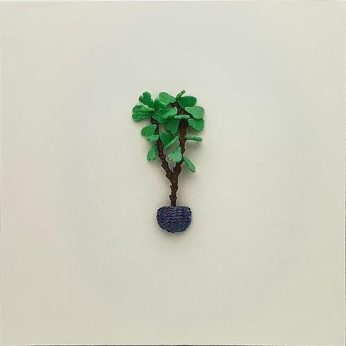 19. fiddle-leaf fig