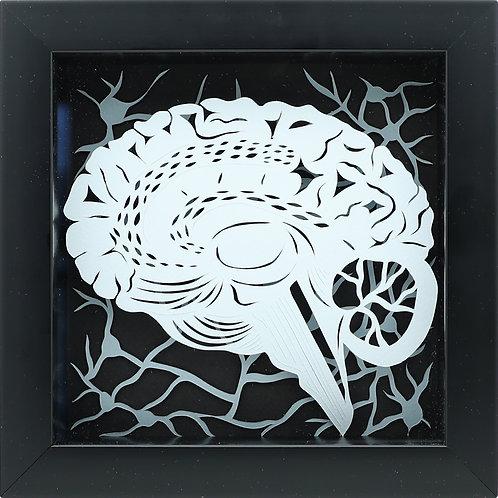 3. Brain