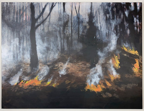 January 7 2020 Fires