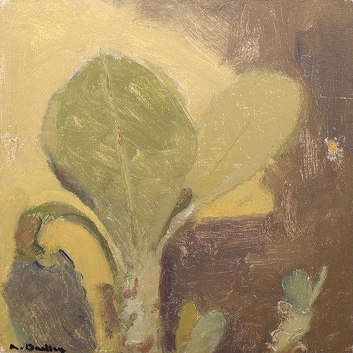 10. House Plant