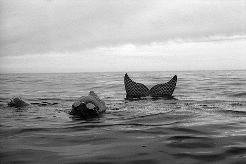 Mermaid (Lake Superior), 2019