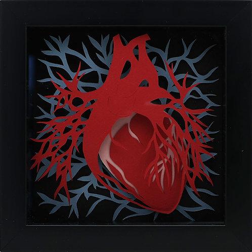 1. Heart