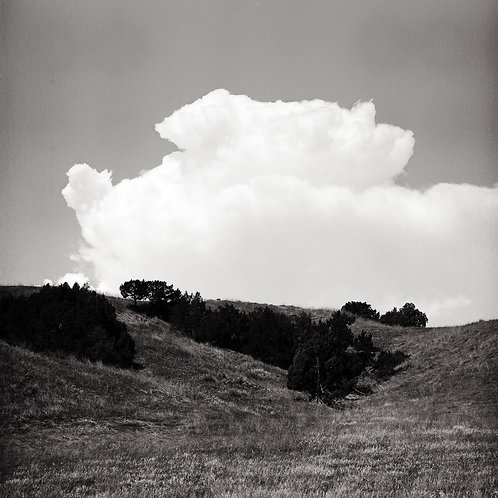 Untitled (Cloud), 2020