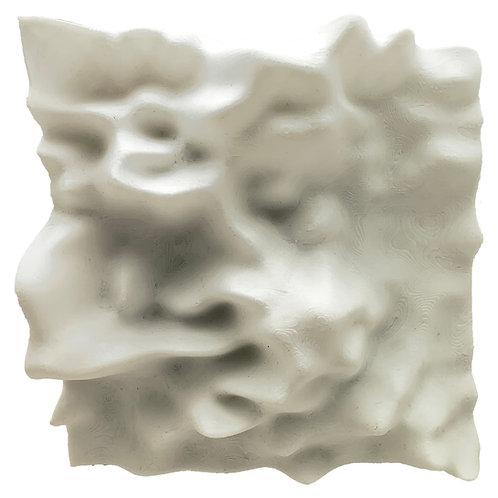 Surface Image 9