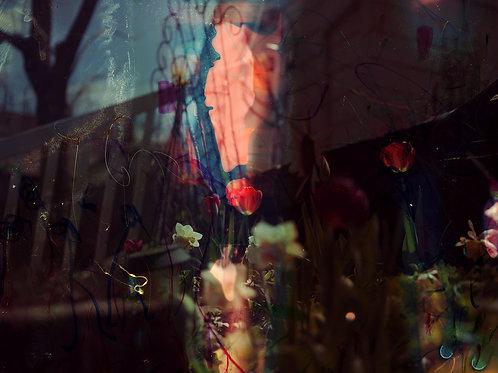 Spring Flowers, 2021