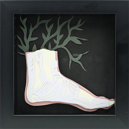 17. Foot