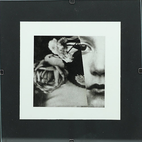 26. Rose and Iris