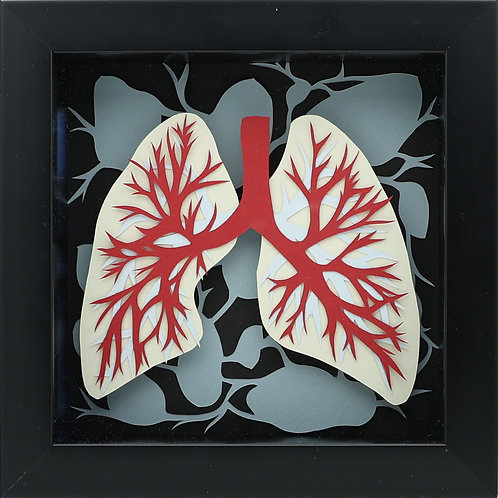 6. Lungs