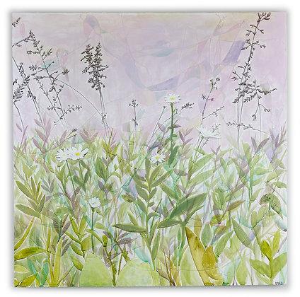 Lavender Bloom, 2020