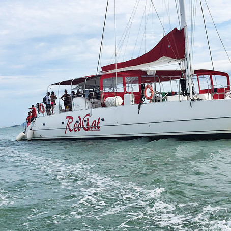 SAIL ON THE RED CAT CATAMARAN TO TABAGO ISLAND