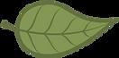 Green Leaf no words.png