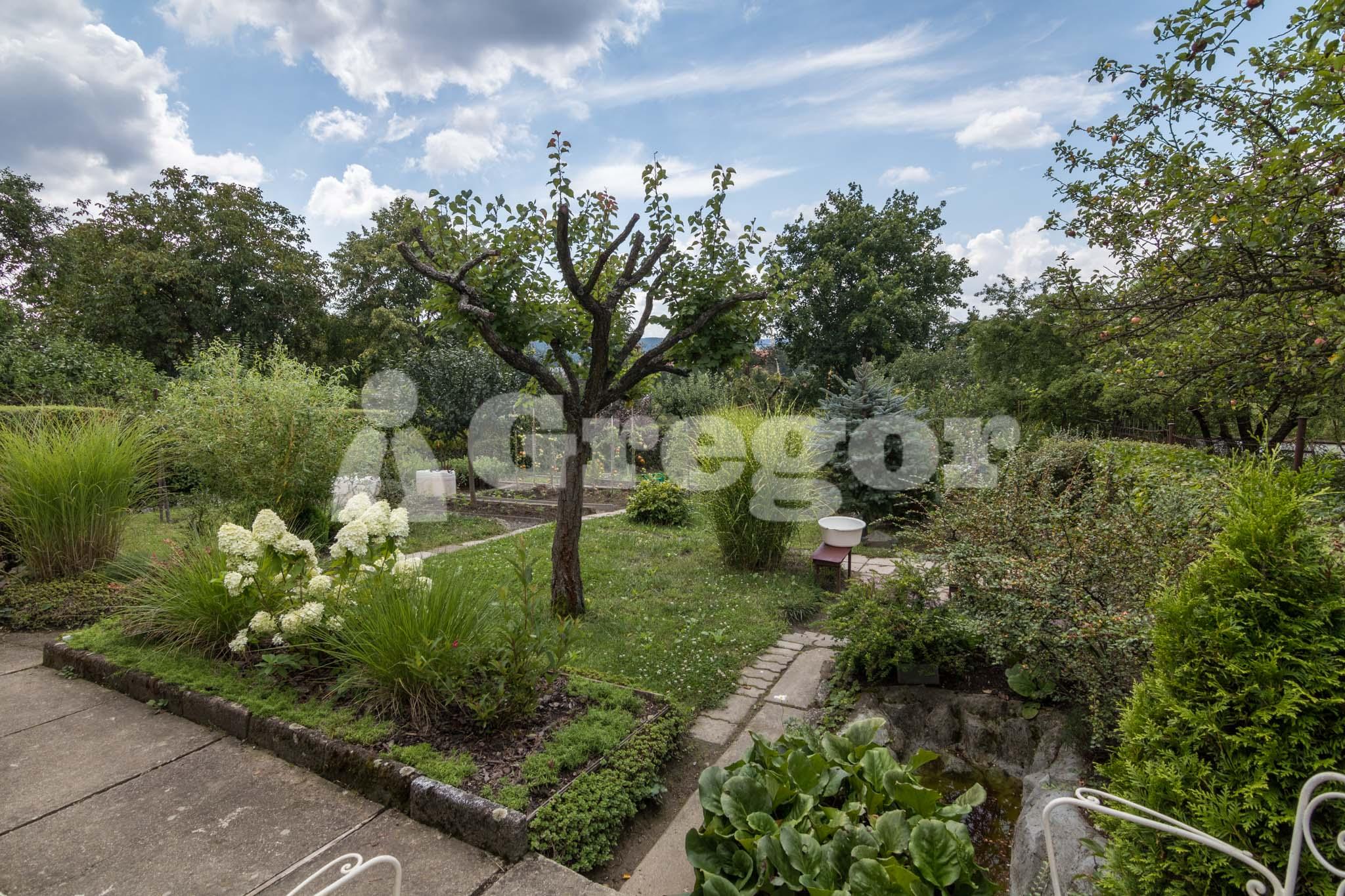 Zahrada Přístavní_Brno