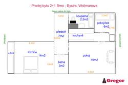 Půdorys_2+1_Wollmanova