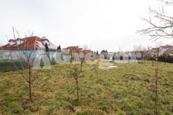 RD Sokolnice zahrada