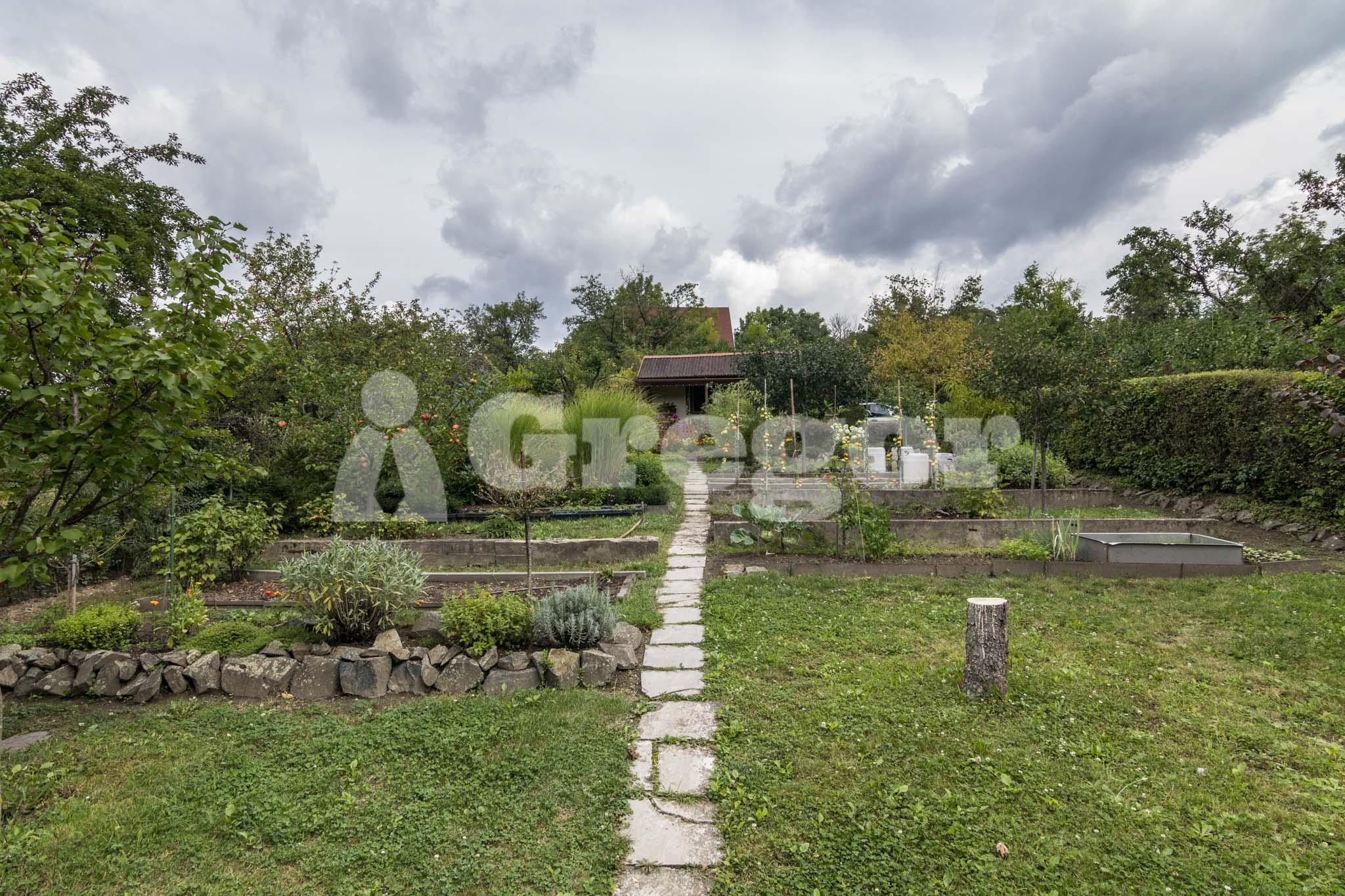 Zahrada Přístavní_Brno-11