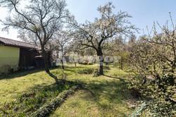 Zahrada na Jurance (2 of 23)