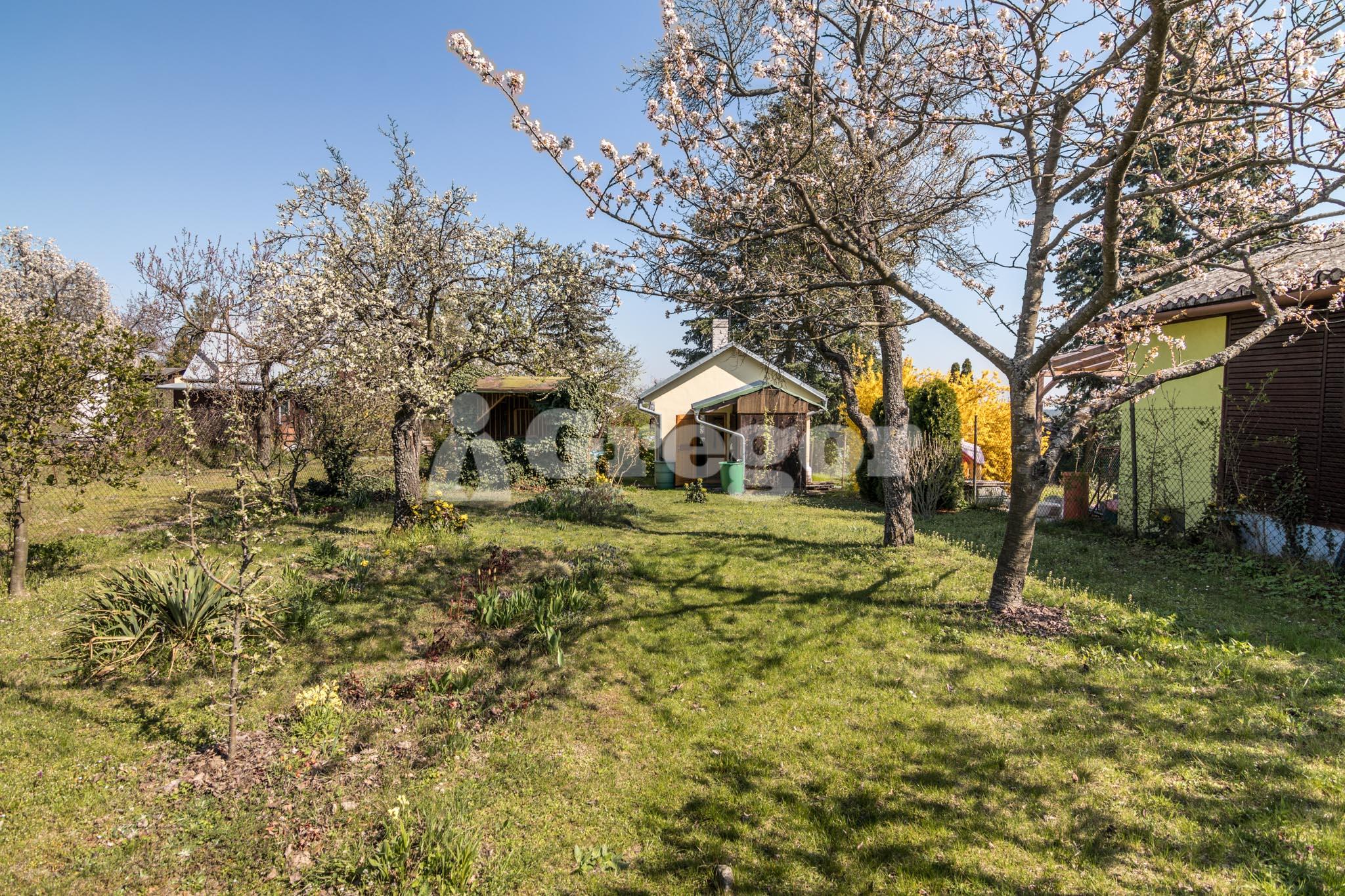 Zahrada na Jurance (14 of 23)