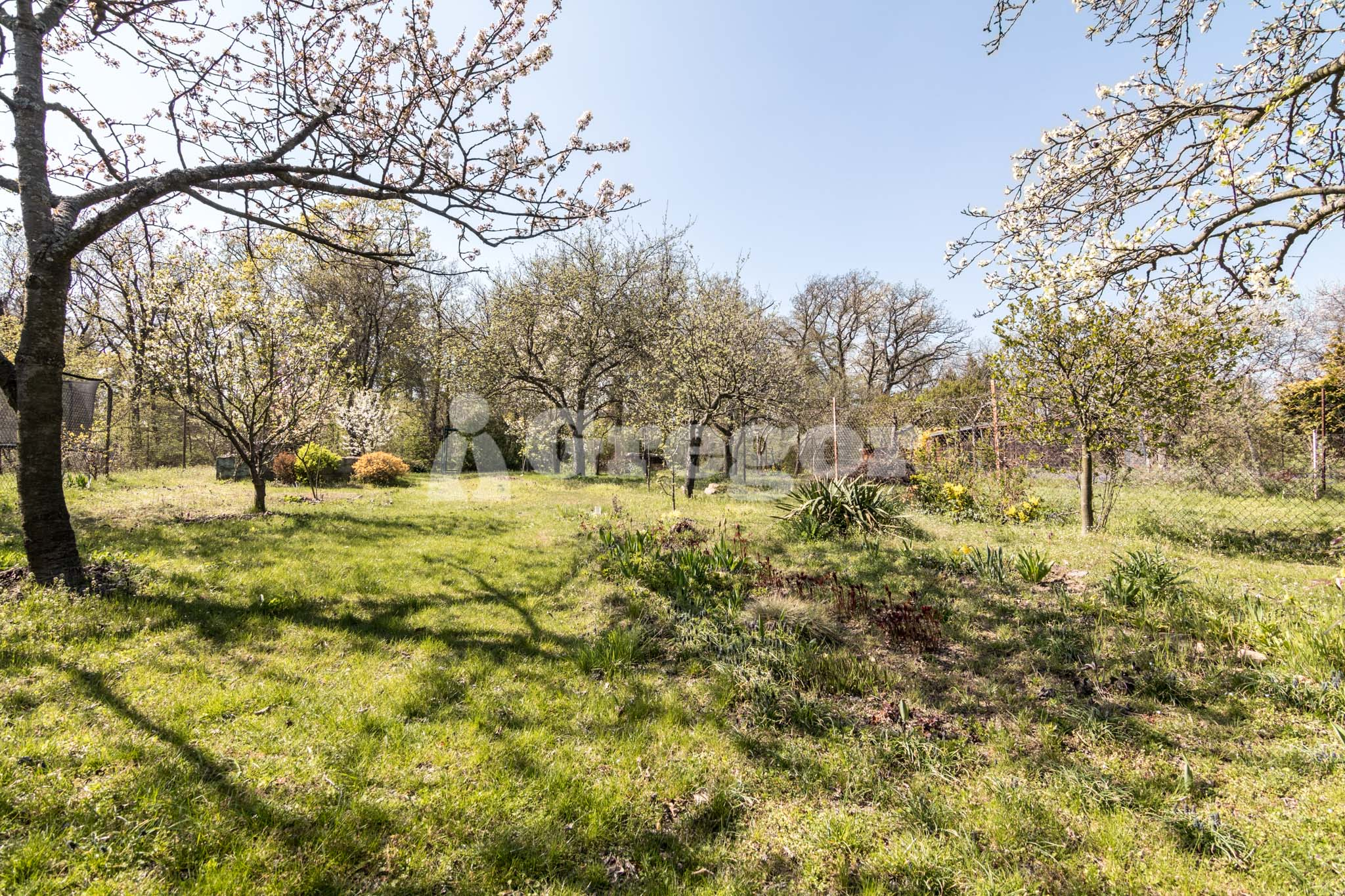 Zahrada na Jurance (21 of 23)