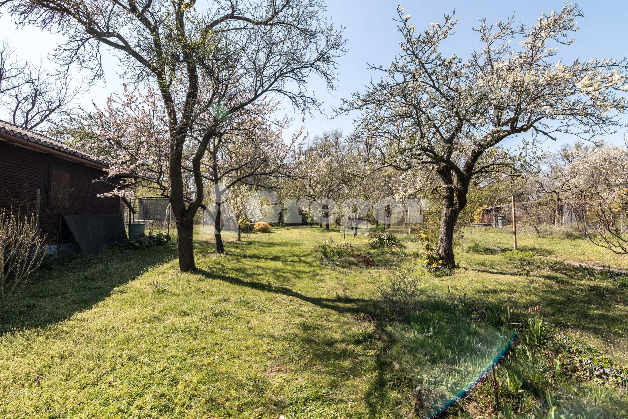 Zahrada na Jurance (1 of 23)