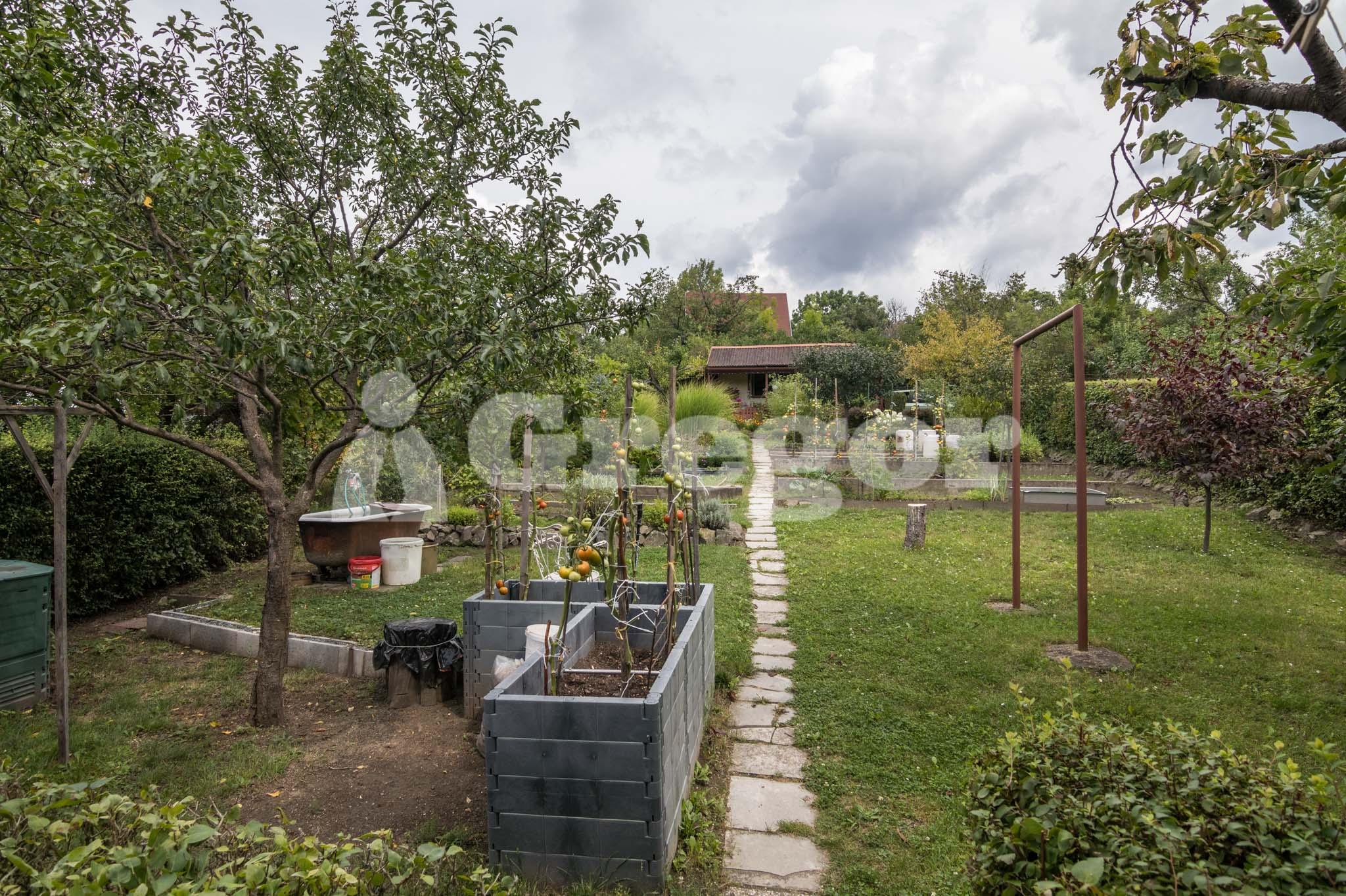 Zahrada Přístavní_Brno-5