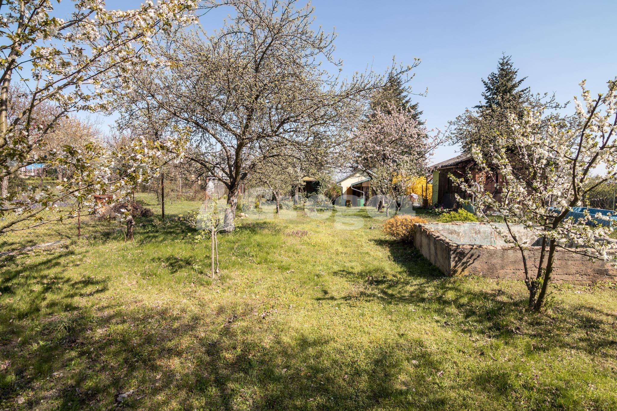 Zahrada na Jurance (11 of 23)