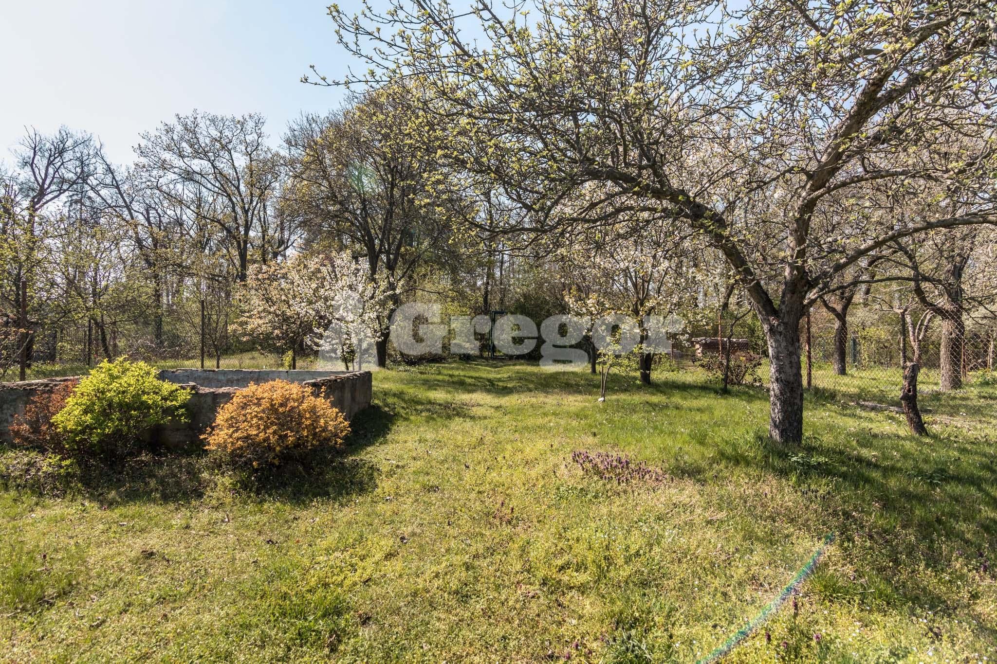 Zahrada na Jurance (13 of 23)