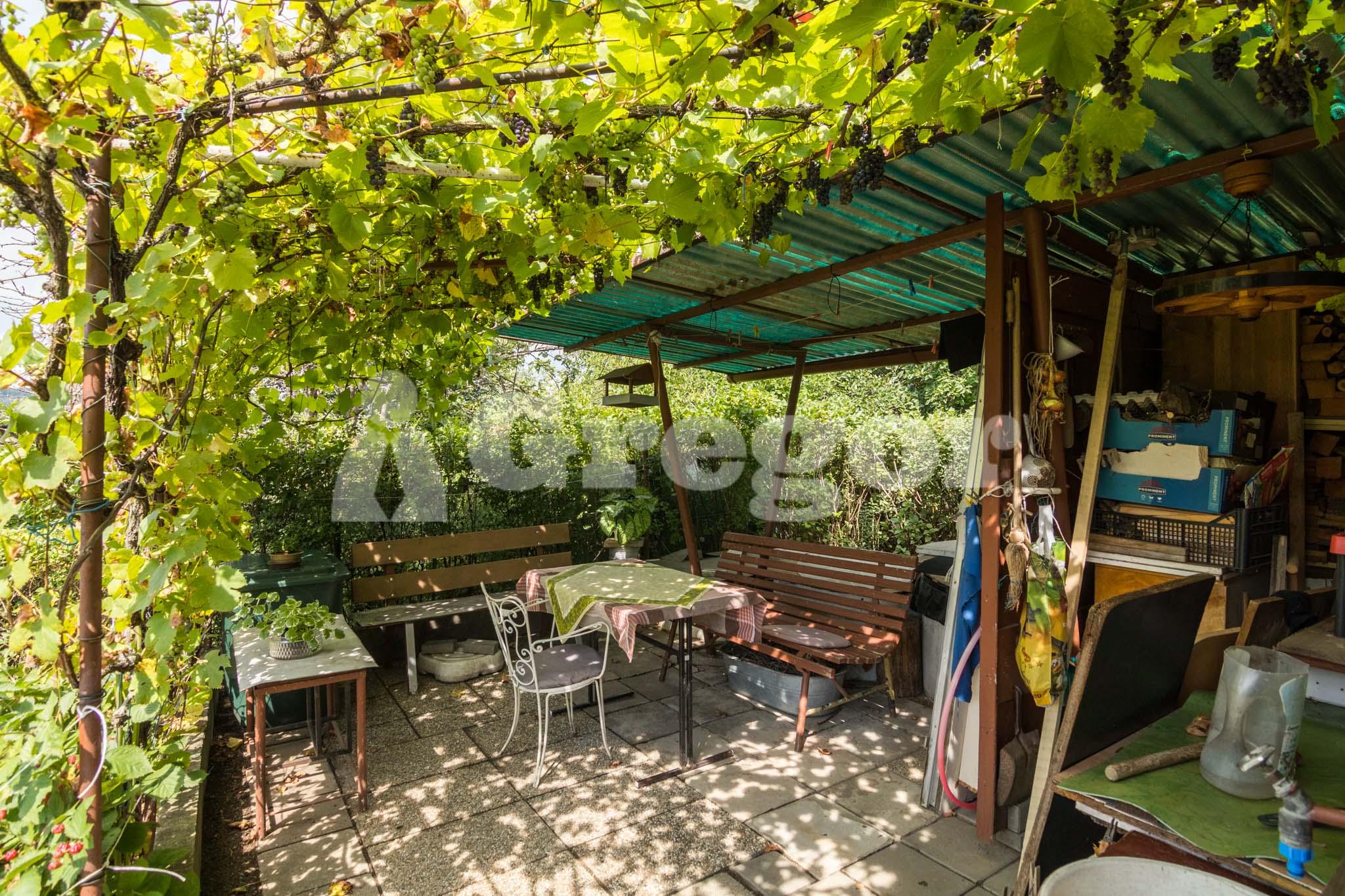 Zahrada Přístavní_Brno-23