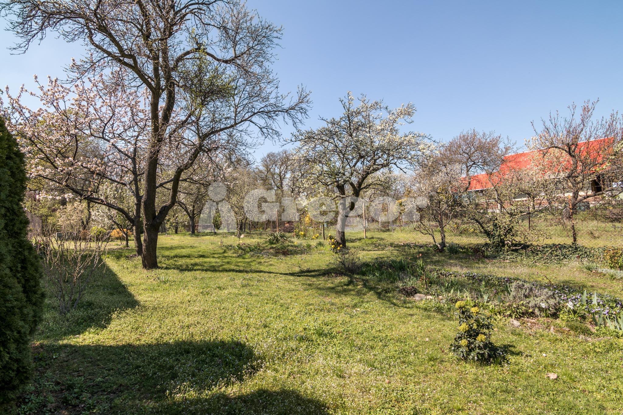 Zahrada na Jurance (3 of 23)