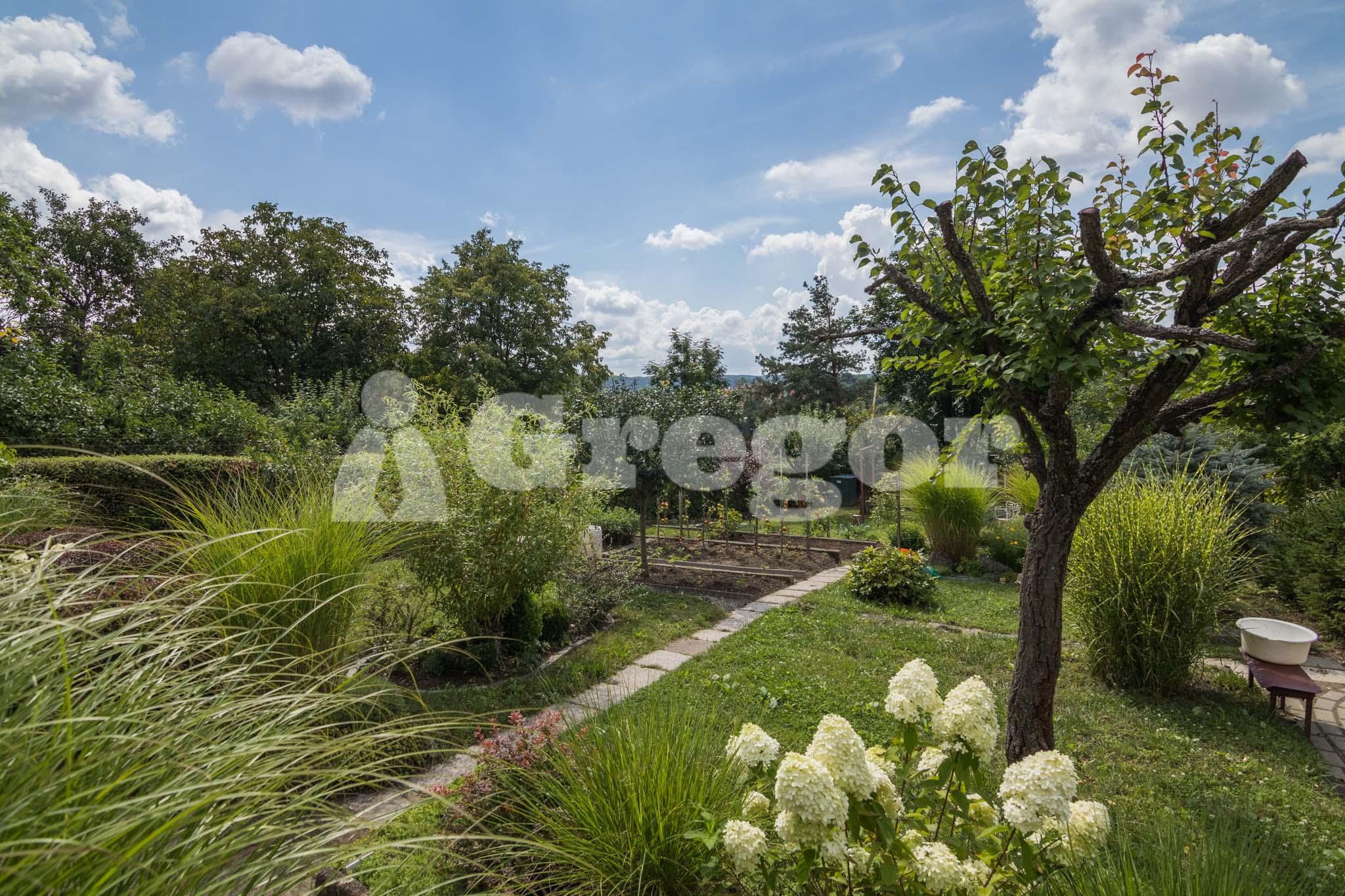 Zahrada Přístavní_Brno-22