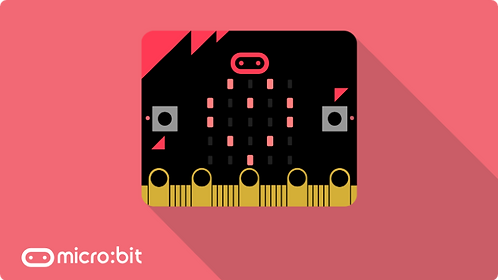Micro:bit - Online Learning -  Private 1:1 Tutoring