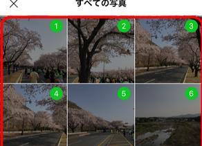 写真整理講座〔2〕LINE・写真のやり取りで知っておきたいこと①