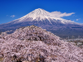 富士山写真家 宮崎 泰一 さんの作品を、ご紹介します