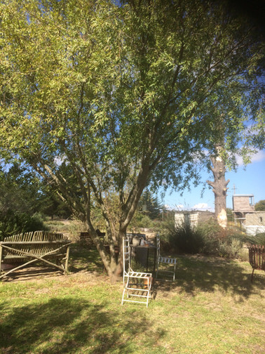 Cape Town Lavender Farm Retreat 2018