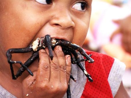Smullen van gefrituurde tarantula?