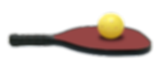 1517857407_pickleball.png