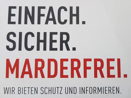 Aktion Marderschutz | EINFACH. SICHER. MARDERFREI / Wir bieten Schutz